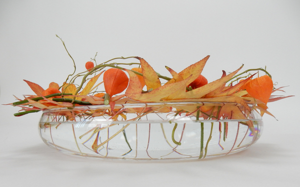 Fall leaves, Physalis and willow
