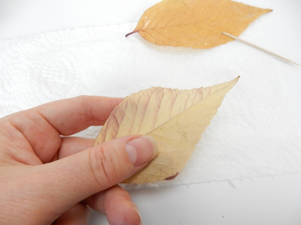 Turn the leaf so that the muted underside faces outward to create a more understated Autumn colour scheme .