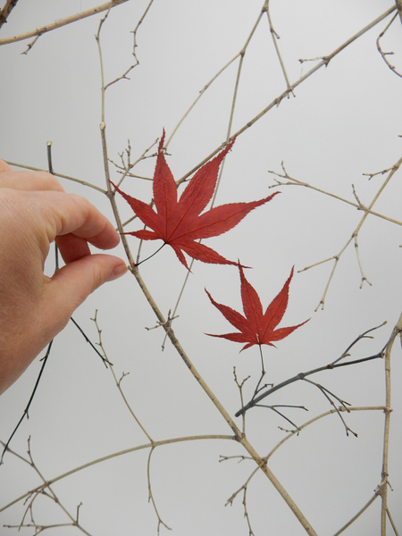 Glue the leaves to the screen with a tiny drop of hot glue