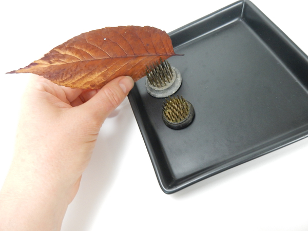 Slip a leaf to rest between the metal teeth of the Kenzan