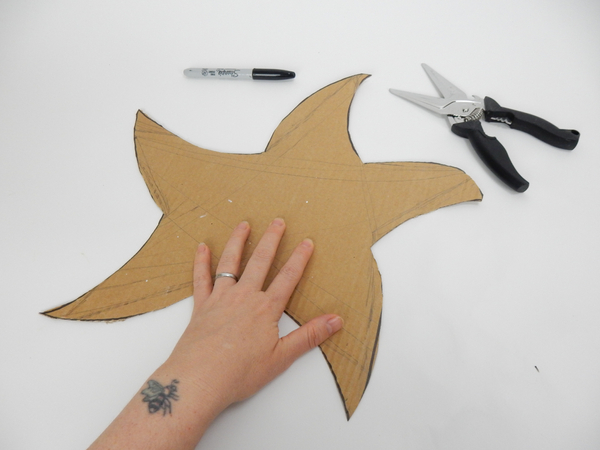 Draw a star shape on sturdy cardboard