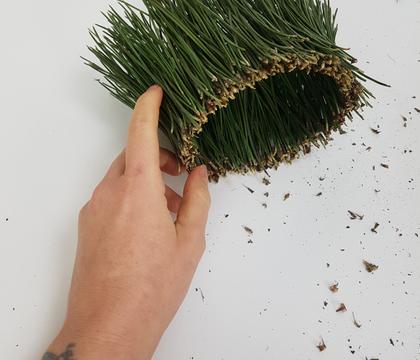 Pine NeedleTube