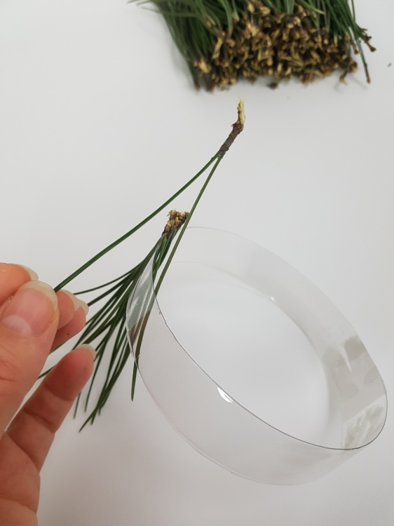 Using the natural connection to keep the needles together around the ring