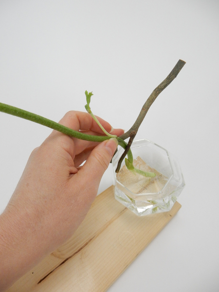 Fit a flower stem between the twig and the vase