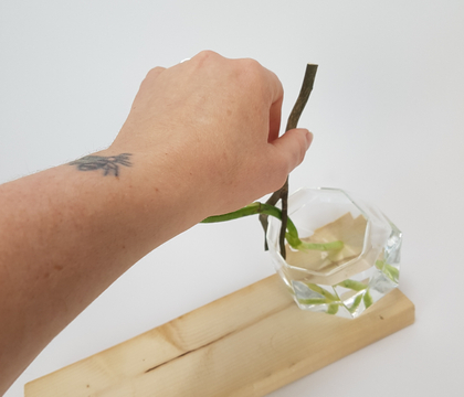 "Using a fork in a twig to ""peg"" a stem in place"