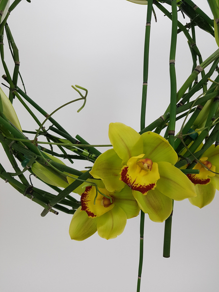 Cymbidium and Equisetum wreath