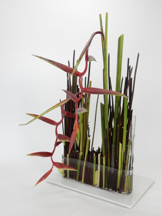 Hanging heliconia stem armature flower arrangement.