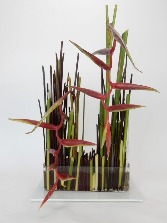 Heliconia stem armature flower design