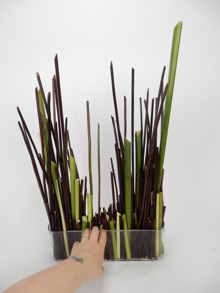 Move the stems around to create your basic design and let the stems settle in place