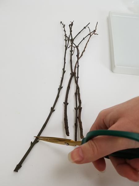 Place the twigs on a working surface