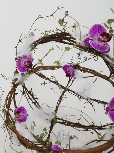 Phalaenopsis and rosary vine spring feather basket design