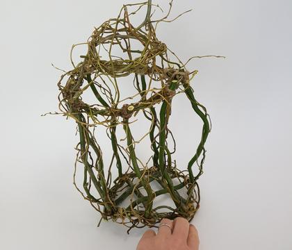 Willow birdcage