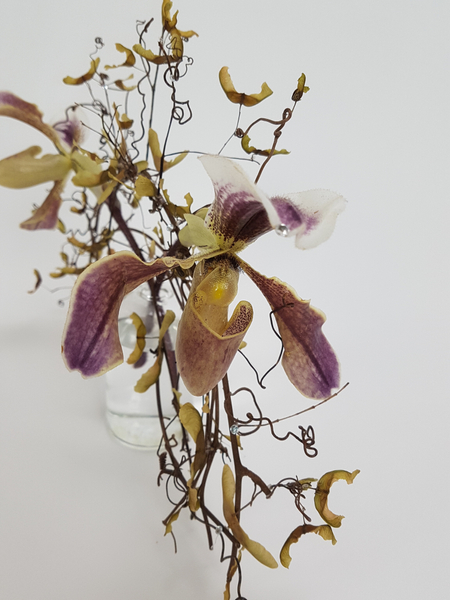 Lady Slipper orchids used in a floral design