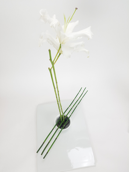 Equisetum and lily flower arrangement