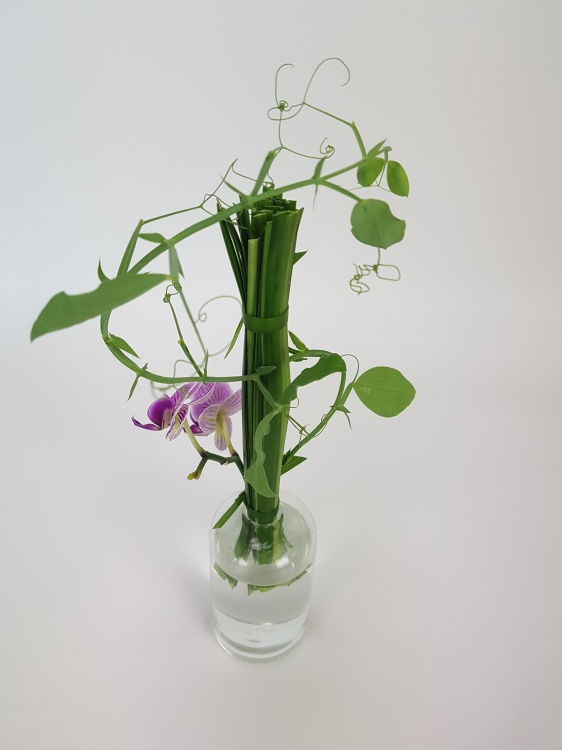 Lily grass bundle for a Phalaenopsis and sweet pea design