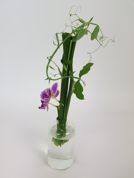 Phalaenopsis, lily grass and sweet pea design