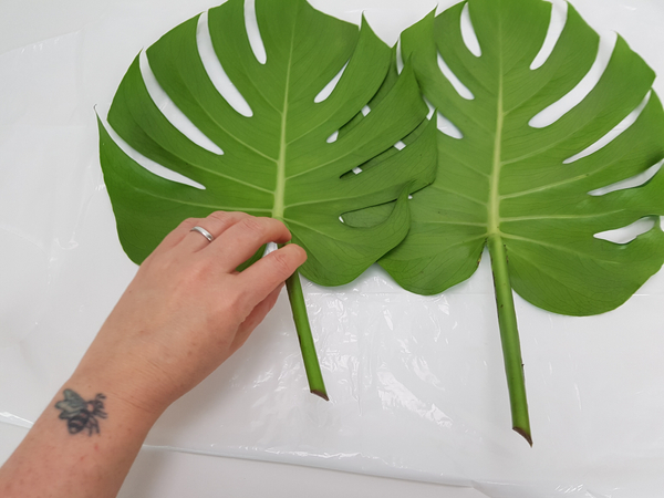 Place the leaves side by side on a flat working surface.  You are going to cut the leaves on the sides that faces in.