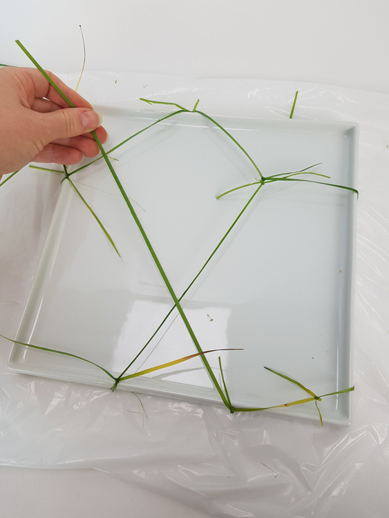 Pull the grass gently so that it fits the container snugly.