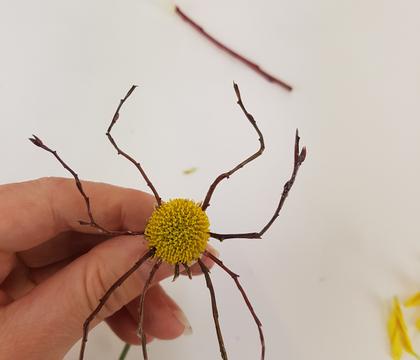 Spider-mum