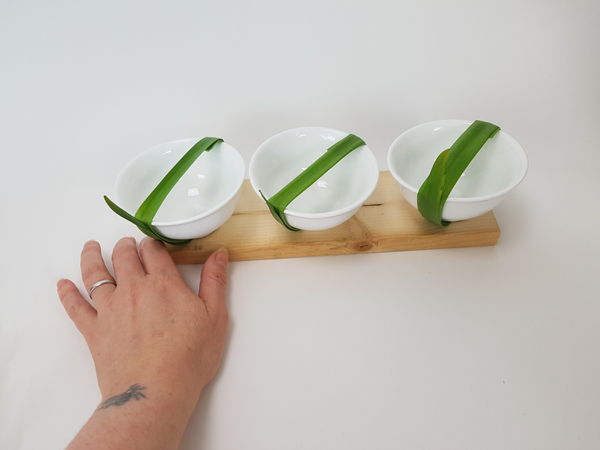 Line the containers up to display