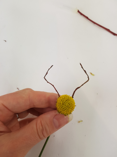 Match the twigs into pairs and glue them to the chrysanthemum