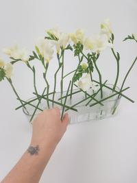 Zig-Zag fold plastic for a flower stem support