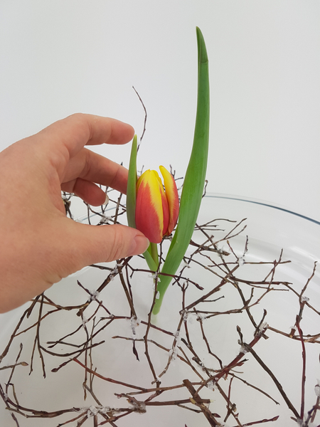 Cut the tulip stems flat and stand it upright in the twig armature