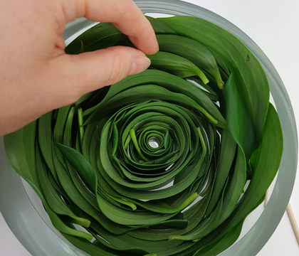 A round, around a round foliage… spiral in a vase