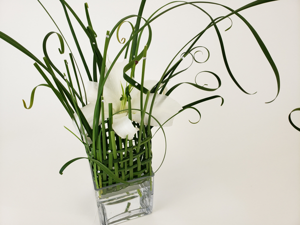 Easter lily in a basket