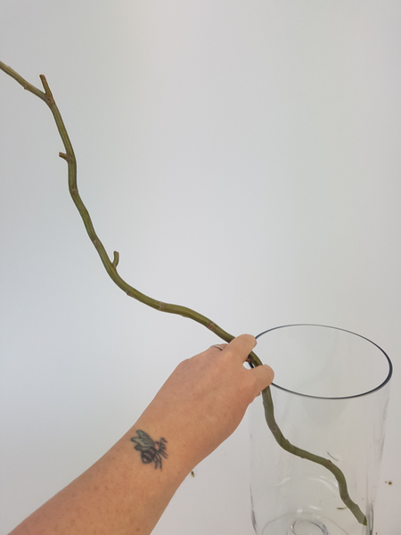 Place a willow twig in a container