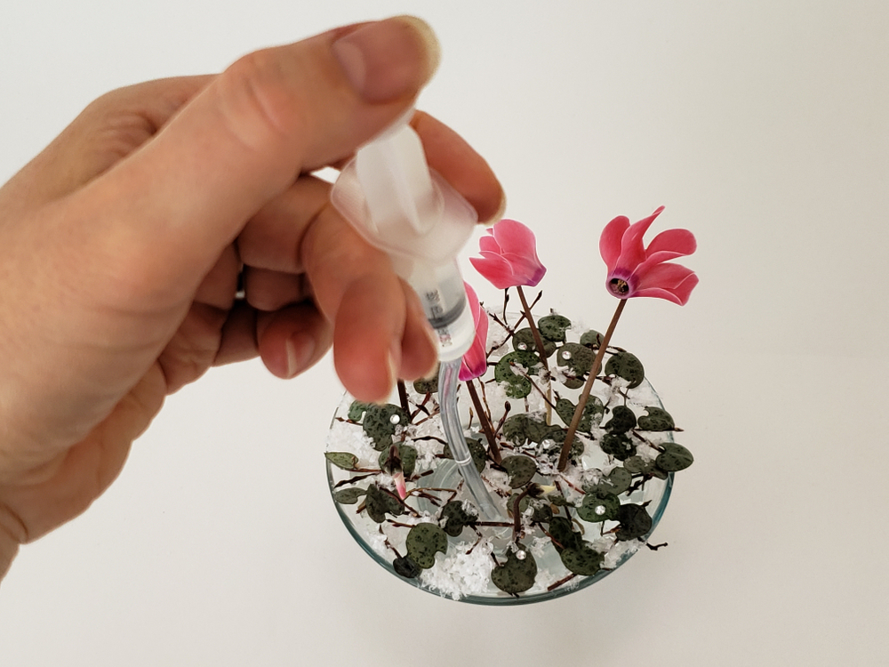 Place the flower stems in the armature and adjust the water level if needed
