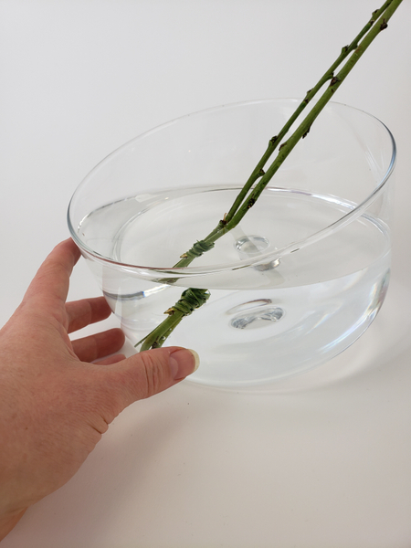 Make sure there is enough water in the container to keep the fresh floral material hydrated