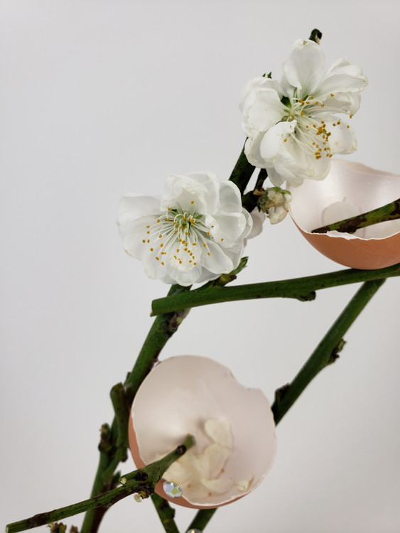 Spring blossom twig flower arrangement