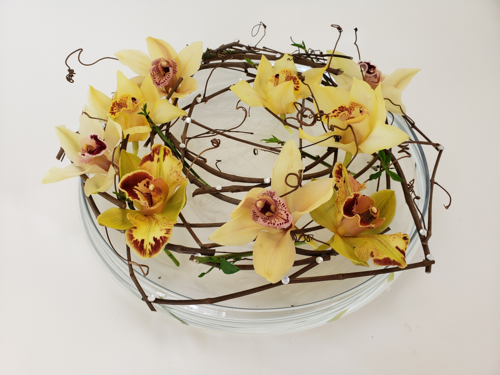 Cymbidium orchids suspended over a shallow container