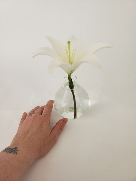 Place the lily to stand facing up in a small bud vase