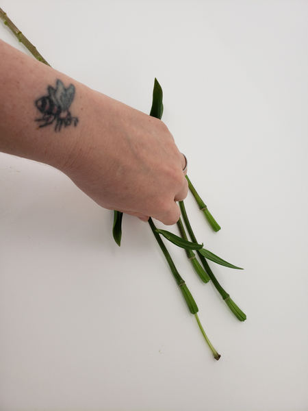 My design was inspired by these lily stems