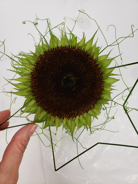 Add tiny blobs of glue to the grass ends and insert it around the outside edge of the sunflower