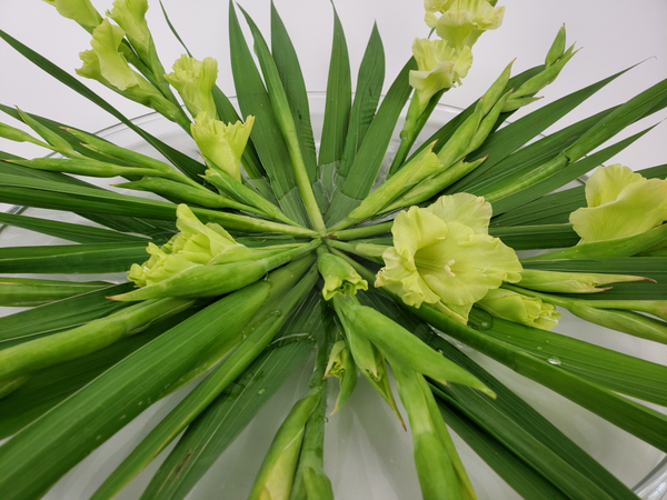Cut spiked flower stems shorter