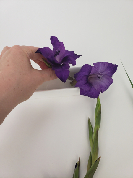 Removing the gladiolus bloom with a tiny section of stem.
