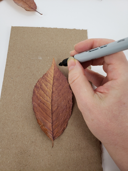 Draw the outline of the leaf on cardboard or paper to use as a template