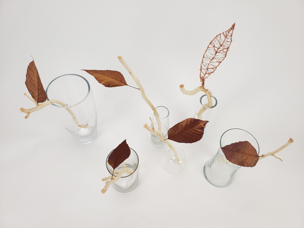 Soft minimalist way of displaying autumn leaves