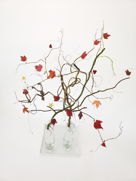 Arrange twigs to create an easy floating Halloween design
