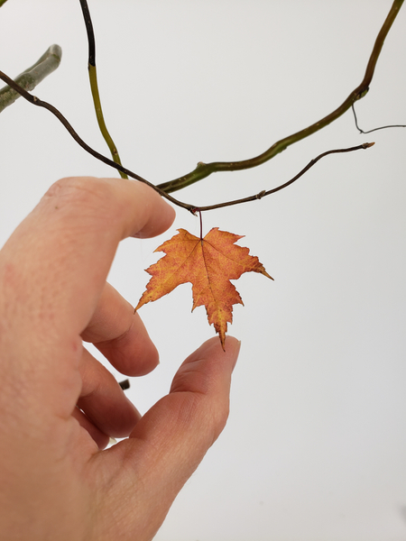 Glue in dried autumn leaves
