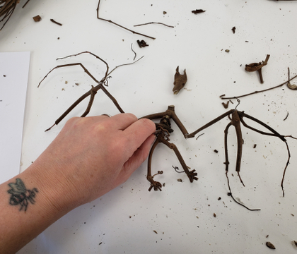 Bat Skeleton crafted from twigs
