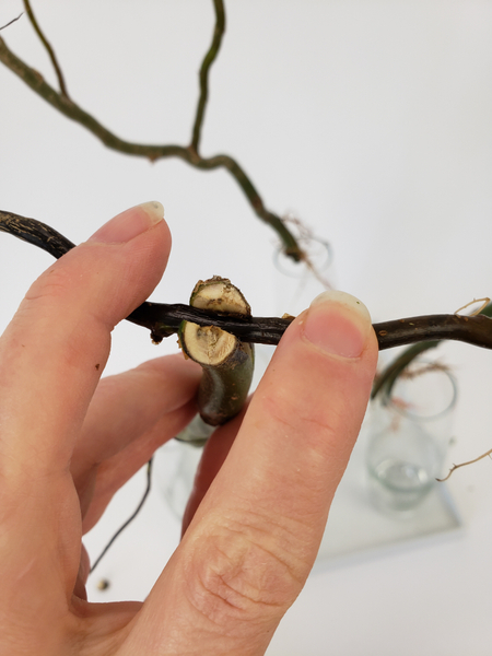 Press the twig into the branch slit to secure