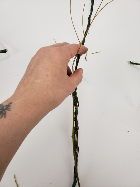 Do not cut away the side branches from these twigs