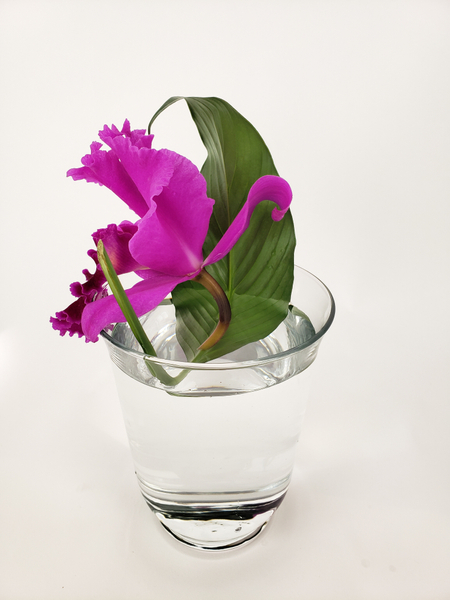 Contemporary floral designing with a Cattleya orchid