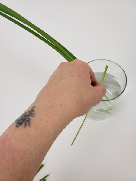 Measure the lily grass for the horizontal weave