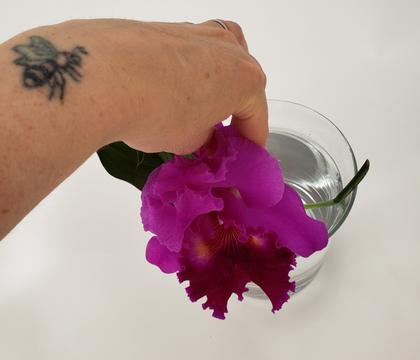 Leaf-puddle for a short stem in a big vase