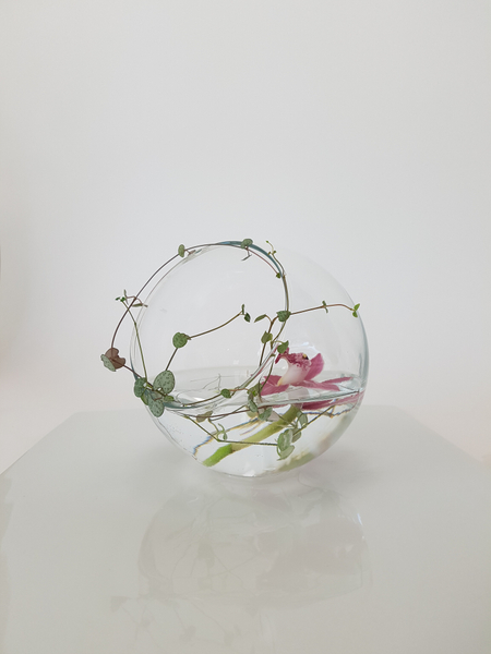 Using a fishbowl vase in a new way